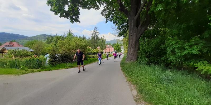 warsztaty nordick walking